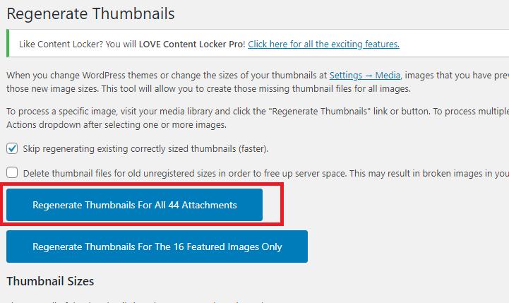 【WordPress】サイトの引越やバックアップ時にFTPでUploadsフォルダがダウンロードできないときはの画像| Knowledge Base