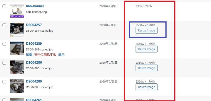 アップロードした元画像(フルサイズ画像)の幅・高さ変更と画質の圧縮を自動で行うプラグイン「Imsanity」の画像|Knowledge Base